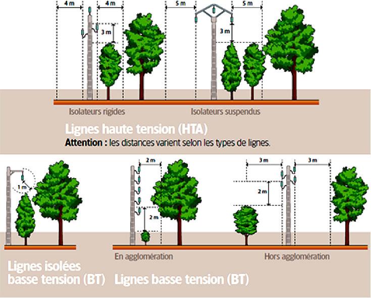 Edsb toutes les actualit s for Reglementation elagage des arbres